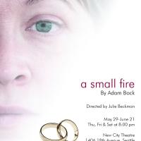 Small-Fire-ad-color